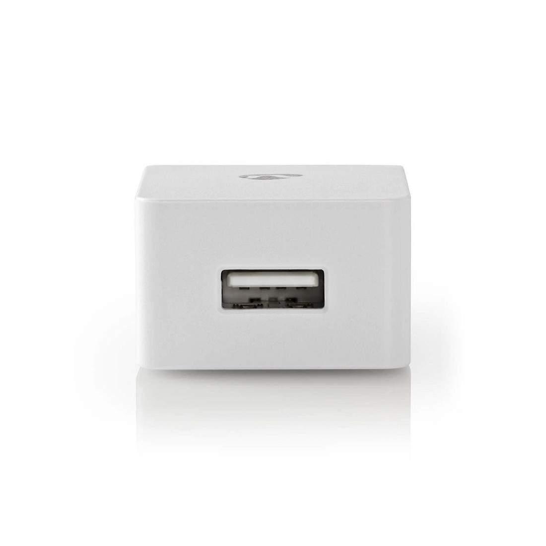 Lightning Väggladdare 2.4 A